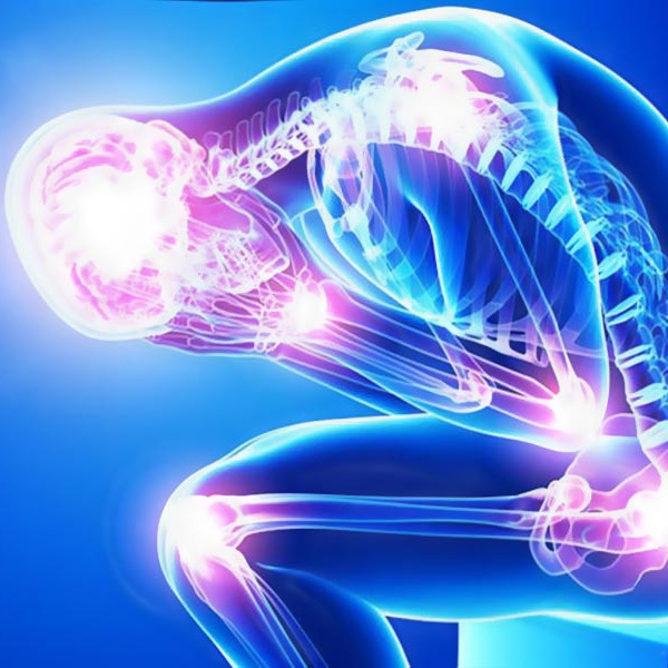reumatologia ascoli piceno